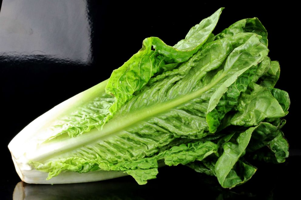 PHOTO: Romaine lettuce.