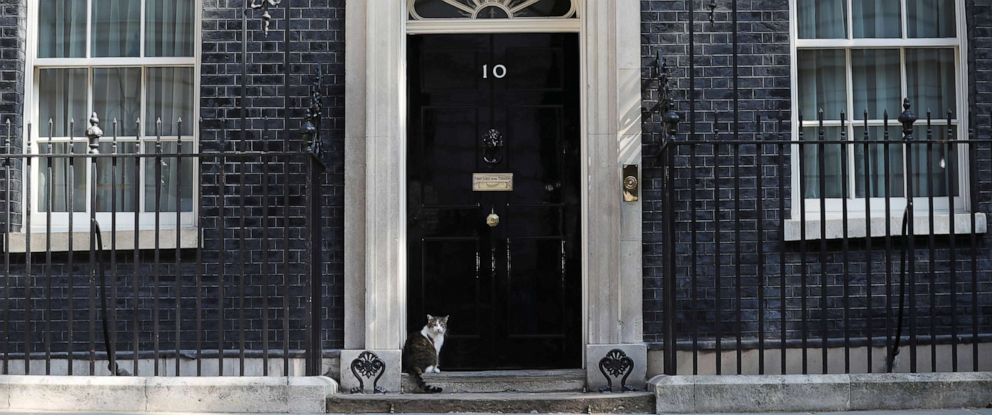 PHOTO: Larry the cat sits outside 10 Downing Street in London, May 24, 2019.