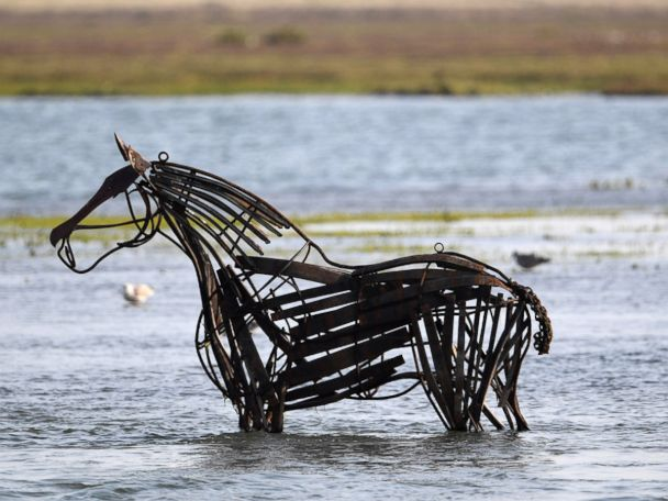 WATCH:  A horse sculpture, cattle traders and Fever Ray: World in Photos