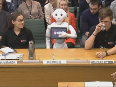 WATCH:  A robot presented evidence to British Parliament