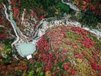 WATCH:  Autumn in China, Pompeii excavation, Tokyo street fashion: World in Photos
