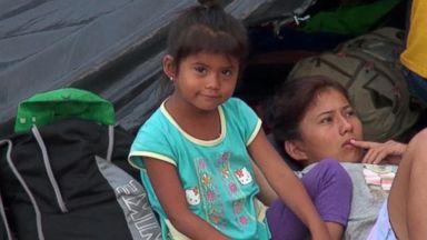 7-year-old migrant girl dies in Border Patrol custody