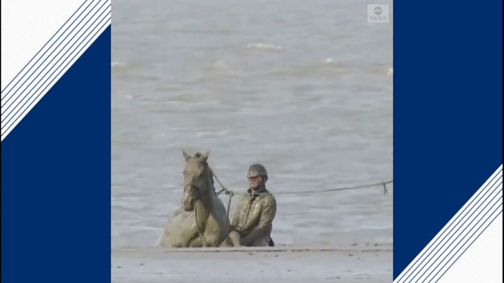 Rescue teams save horse stuck in mud on a beach