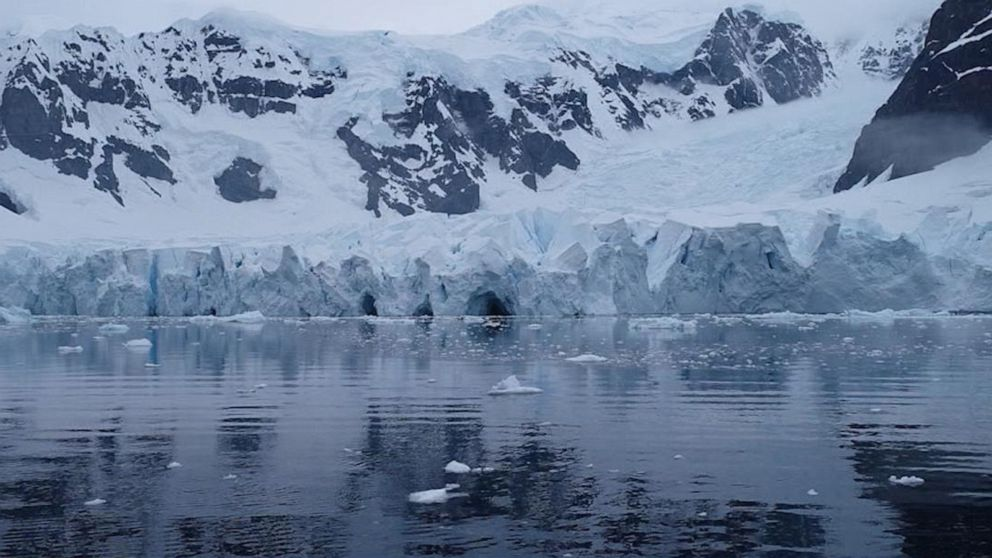 Scientists are 'racing against the clock' to collect crucial data on life in Antarctica