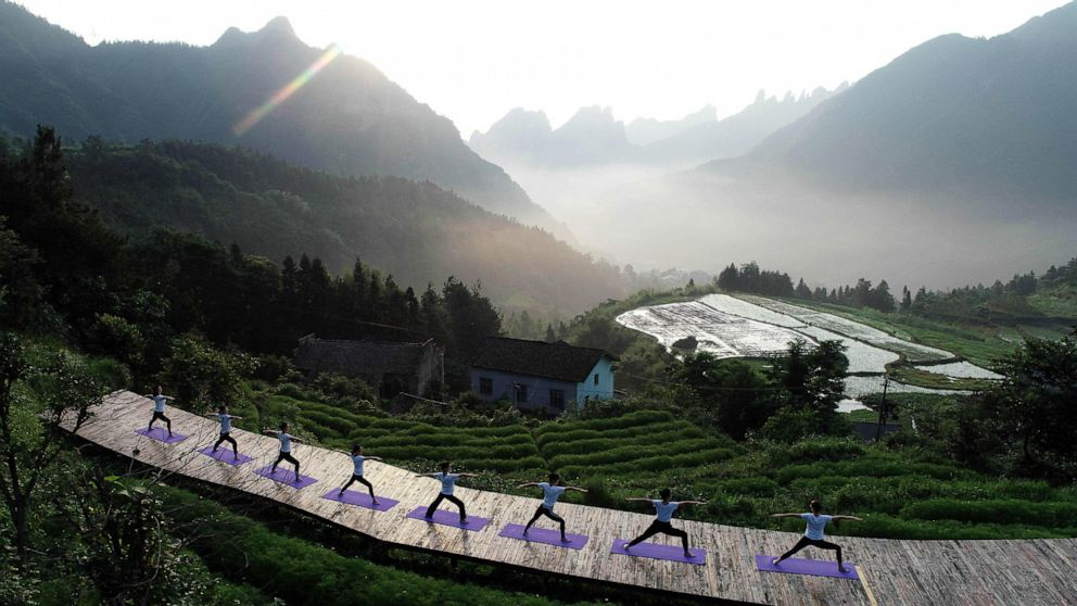 Mountainside yoga, World Cup soccer goal, cuckoo chicks: World in Photos