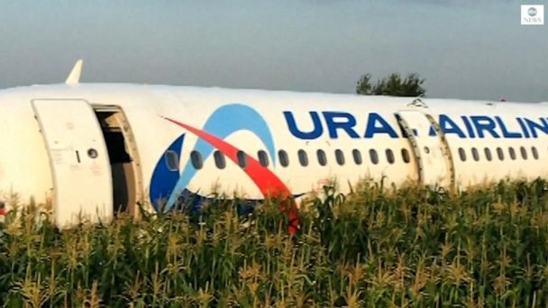 23 injured after plane collides with birds