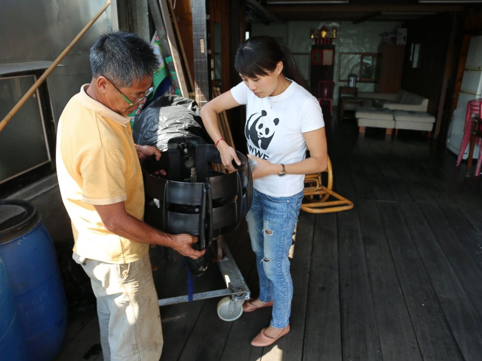 PHOTO: Samantha Lee assists local fisherman place propeller guards to avoid hitting dolphins.