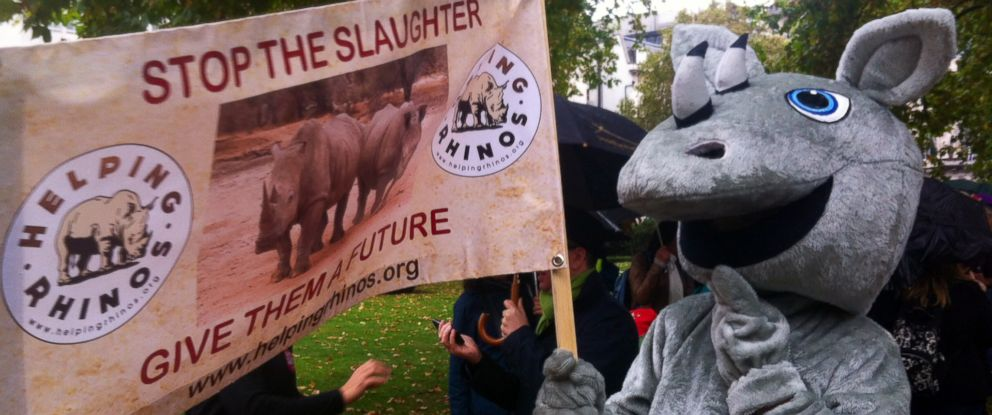 PHOTO: Protesters take part in a march in London on Oct. 4, 2014 demanding action to stop rhino and elephant poaching.