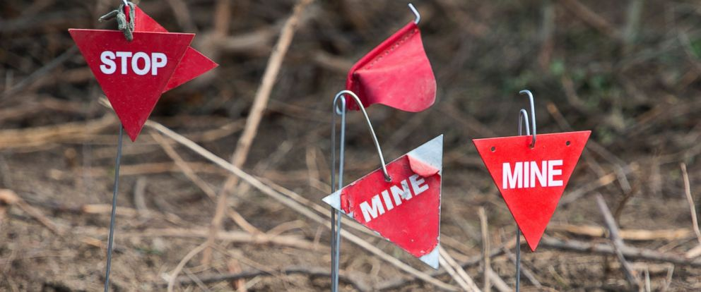 PHOTO: Landmines are found and marked in a minefield near Lasinja, Croatia, in this file photo, May 29, 2013.