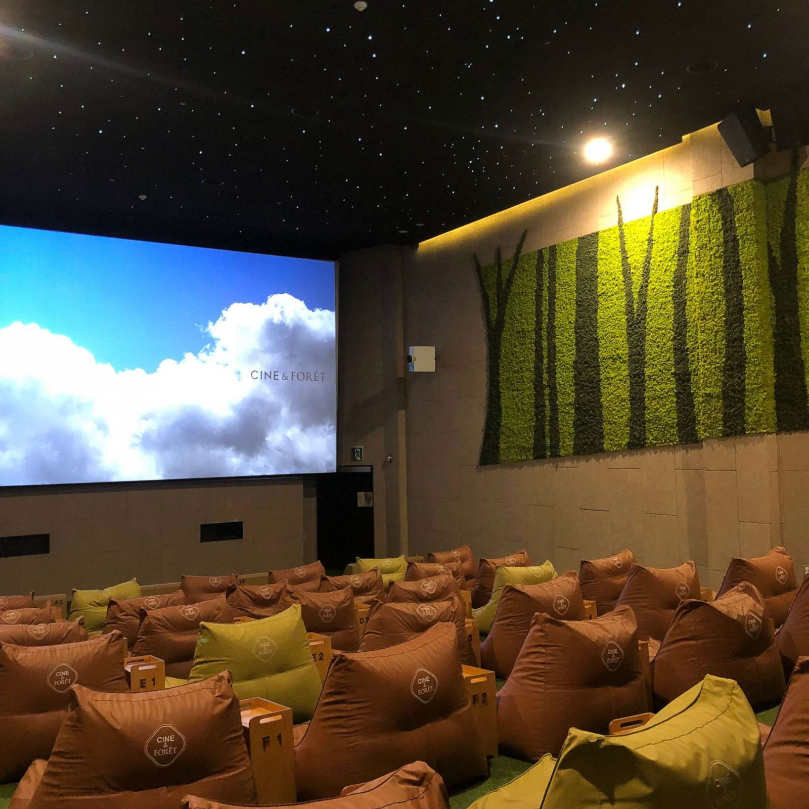Terrific South Korean Theaters Transform Into Forest Living Room And Machost Co Dining Chair Design Ideas Machostcouk