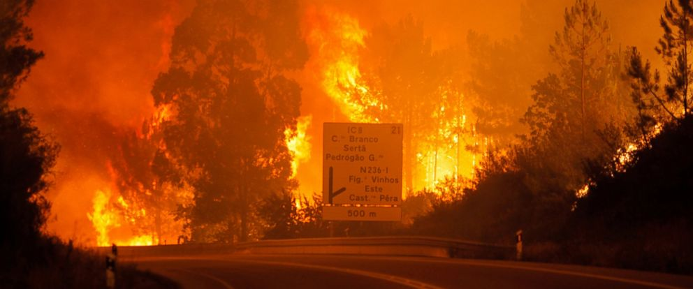 PHOTO: Flames rise during a forest fire in Pedrogao Grande, Leiria District, Center of Portugal, June 17, 2017.