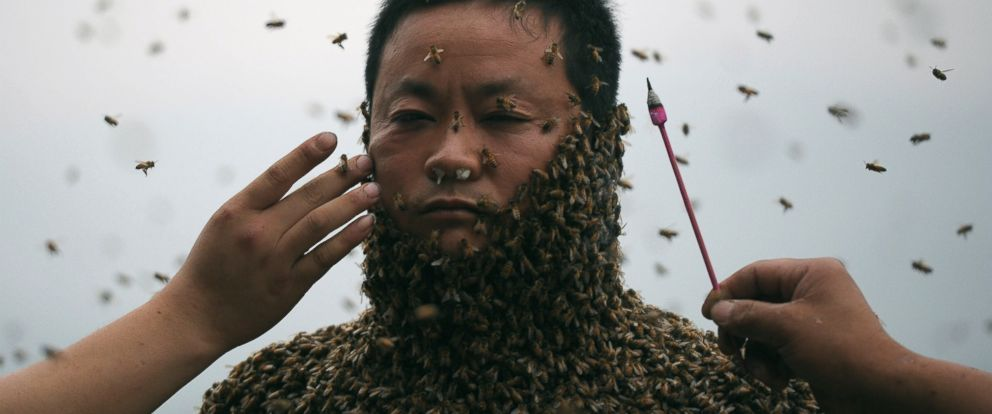 a279834f0b4 Man Dons Bee Suit Made of 460