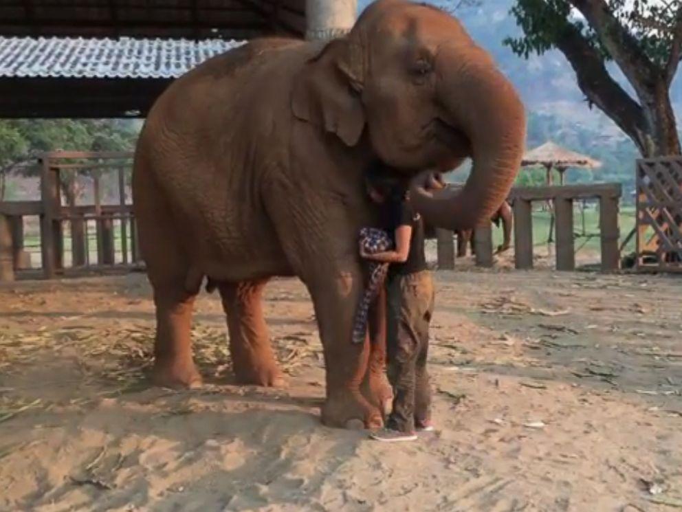 PHOTO: Faamai, an elephant at the Save Elephant Foundation in Thailand, falls asleep when her caretaker, Lek, sings a lullaby.