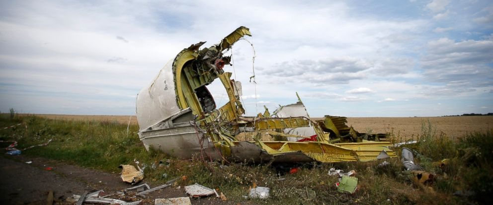 PHOTO: A part of the wreckage is seen at the crash site of the Malaysia Airlines Flight MH17 near the village of Hrabove (Grabovo), Ukraine, July 21, 2014.