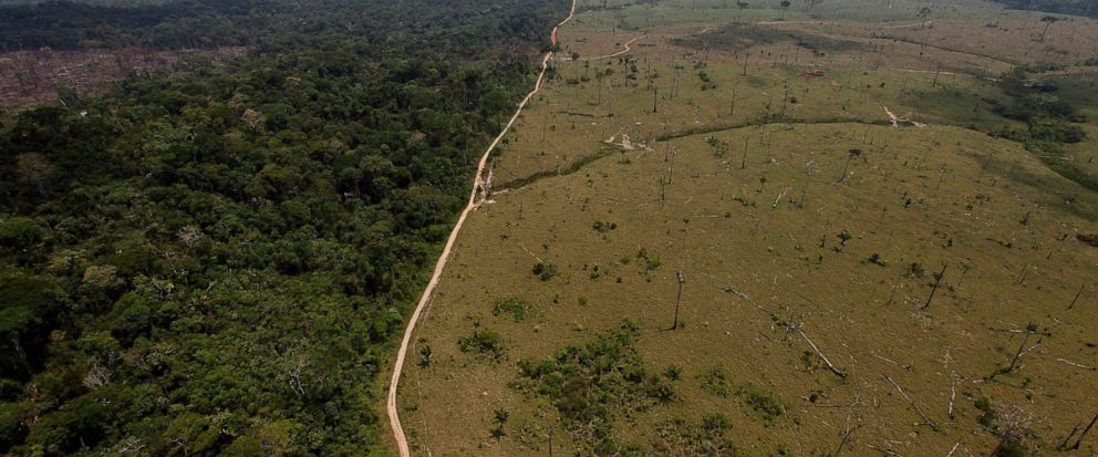 FILE - This Sept. 15, 2009 file photo shows a deforested area near Novo Progresso in Brazils northern state of Para. The Bolsonaro administration in Brazil has cancelled a United Nations climate change workshop to be held in the city of Salvador in