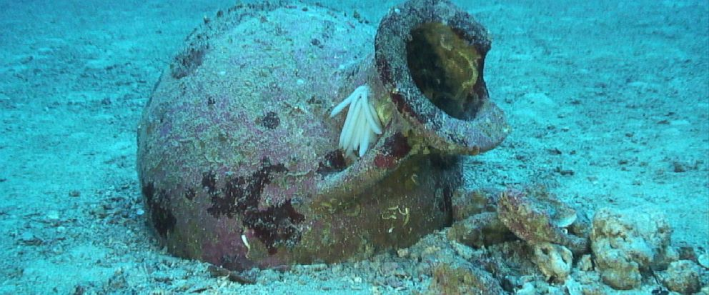 In this undated photo provide by PRM Nautical Foundation on Friday, July 12, 2019, an amphora which dates from between the 7th and 5th centuries BC stands underwater near the shores of the Karaburun peninsula, Albania. A joint Albanian - American und