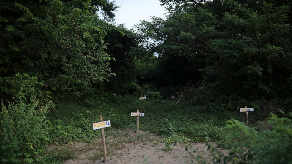 Researchers confirm 1,600 secret graves in Mexico since 2006