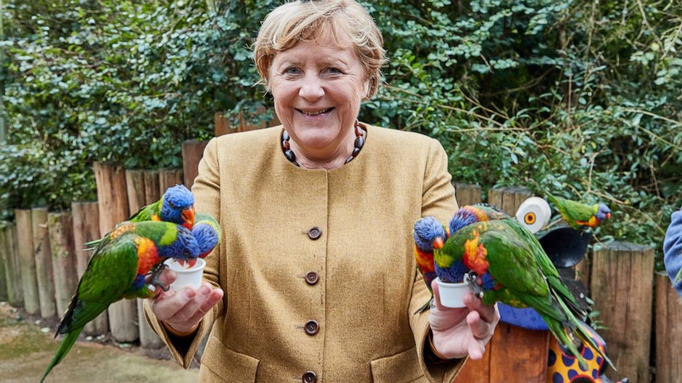 What a cracker! Merkel pecked by parrot