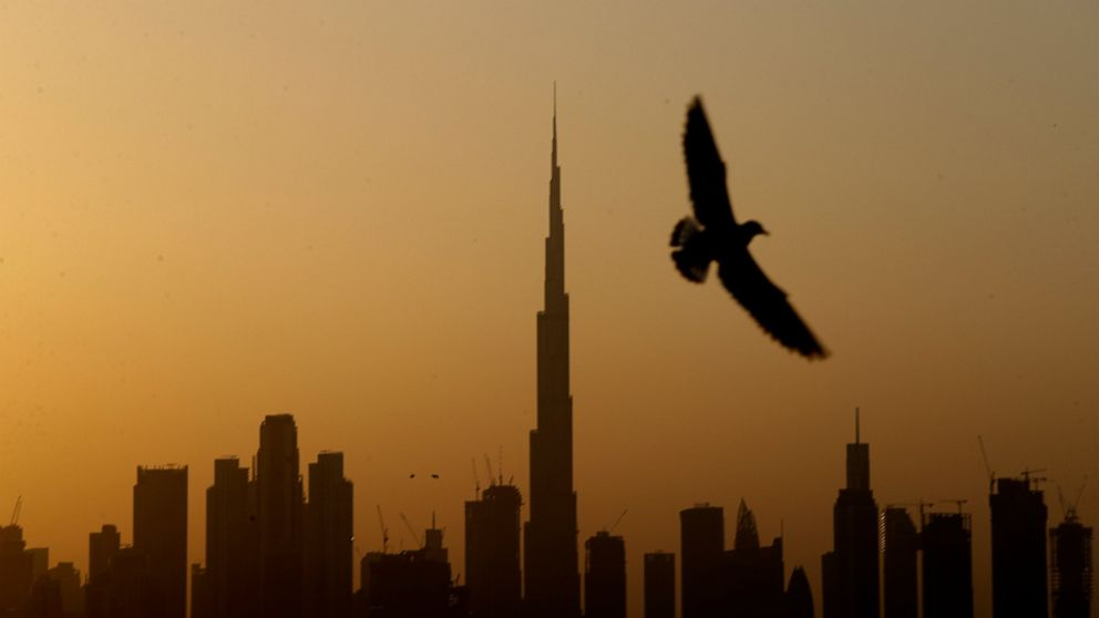 United Arab Emirates says it will offer citizenship to some