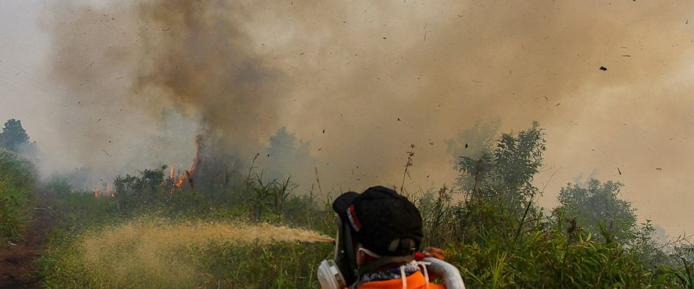Firefighters spray water to extinguish brush fires in Kampar, Riau province, Indonesia, Wednesday, Sept. 11, 2019. Authorities shut most schools in parts of Indonesias Sumatra island to protect children from a thick, noxious haze as deliberately set