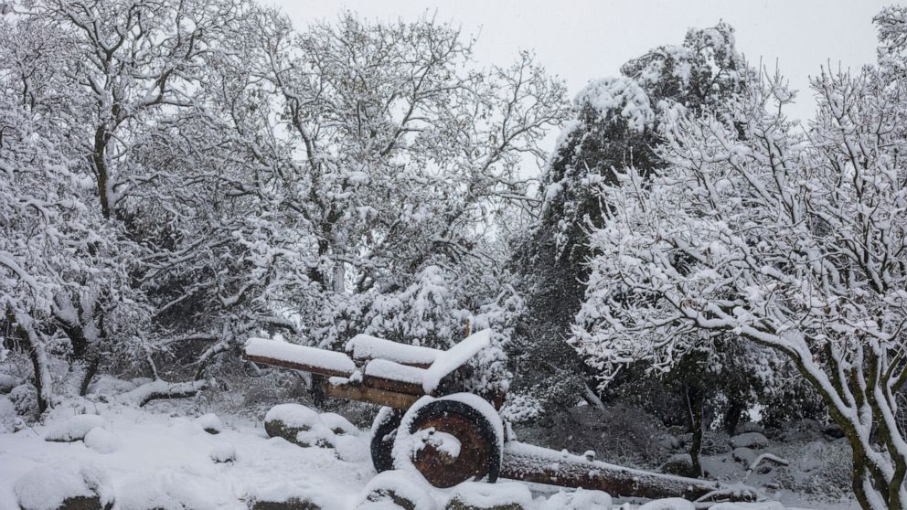 Heavy Snowfall Blankets Parts of Syria, Lebanon, Jordan, and Israel as Winter Storm Hits Middle East