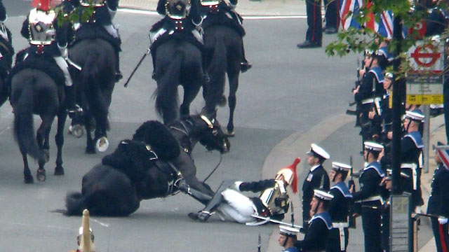 PHOTO: Horse Falls in Royal Wedding Parade