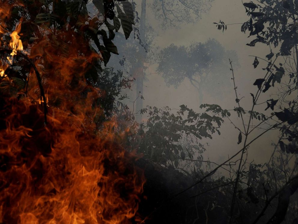 PHOTO: A fire burns a tract of Amazon jungle as it is cleared by loggers and farmers near Porto Velho, Brazil, August 27, 2019.