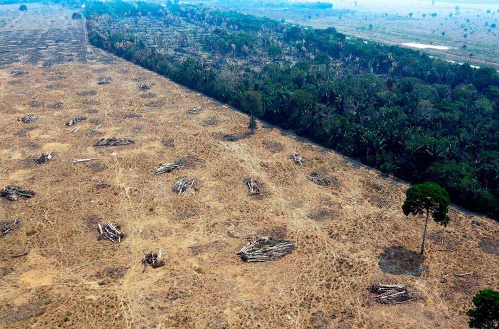 PHOTO: Aerial view of burnt areas of the Amazon rainforest, near Porto Velho, Rondonia state, Brazil, Aug. 24, 2019.