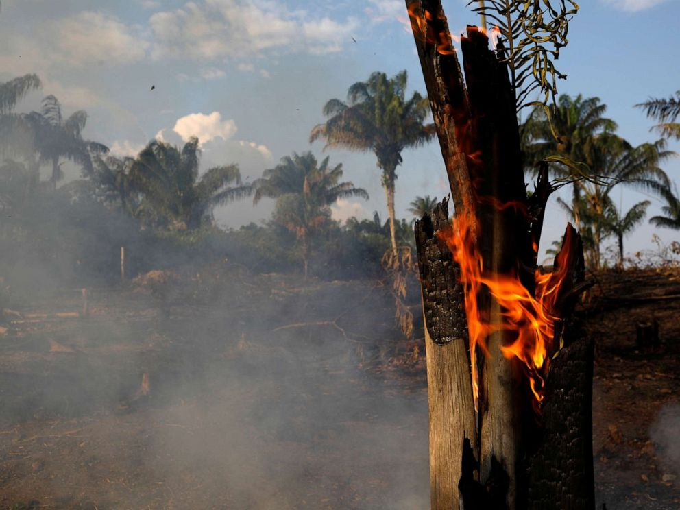 PHOTO: A tract of Amazon jungle is seen burning as it is being cleared by loggers and farmers in Iranduba, Amazonas state, Brazil August 20, 2019.