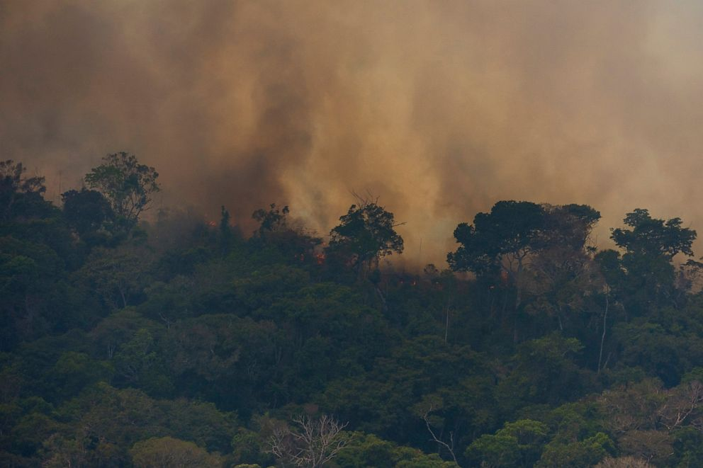 PHOTO: Fire consumes the jungle near Porto Velho, Brazil, Friday, Aug. 23, 2019. Brazilian state experts have reported a record of nearly 77,000 wildfires across the country so far this year, up 85% over the same period in 2018.