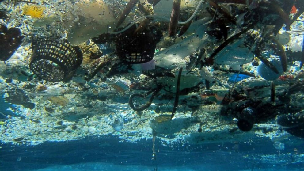 A photo provided by NOAA Pacific Islands Fisheries Science Center shows debris in Hanauma Bay, Hawaii in 2008. A 2014 study estimated nearly 270,000 tons of plastic is floating in the world's oceans.