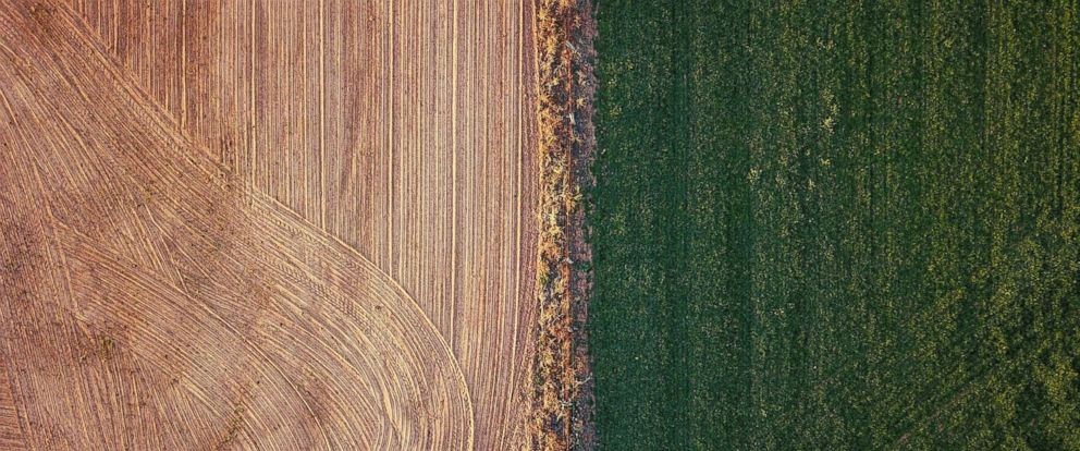 PHOTO: An irrigated paddock can be seen next to a ploughed paddock on a farm located on the outskirts of the town of Mudgee in New South Wales, Australia, July 18, 2018.