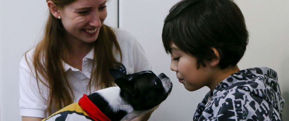 PHOTO: In this April 28, 2017 photo, 9-year-old Diego Rosales, who has autism, interacts with therapy dog Perry before his dental appointment at the Los Andes University Medical Center on the outskirts of Santiago, Chile.