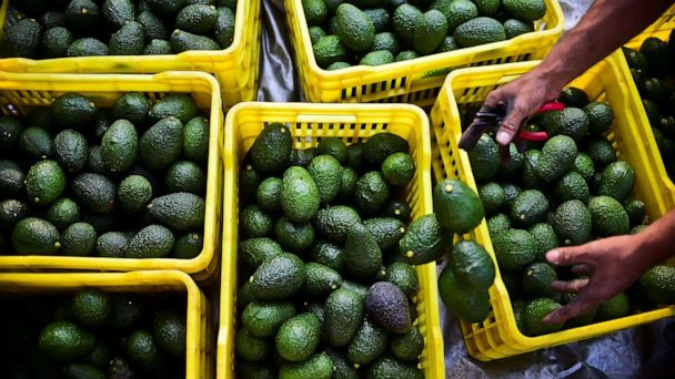 Trump tariffs on Mexico would likely mean Americans paying more for cars, avocados