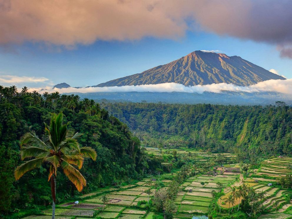 PHOTO: Rice terraces in the village of Rendang and Gunung Agung Volcano in Bali, Indonesia, are pictured in this undated stock photo.
