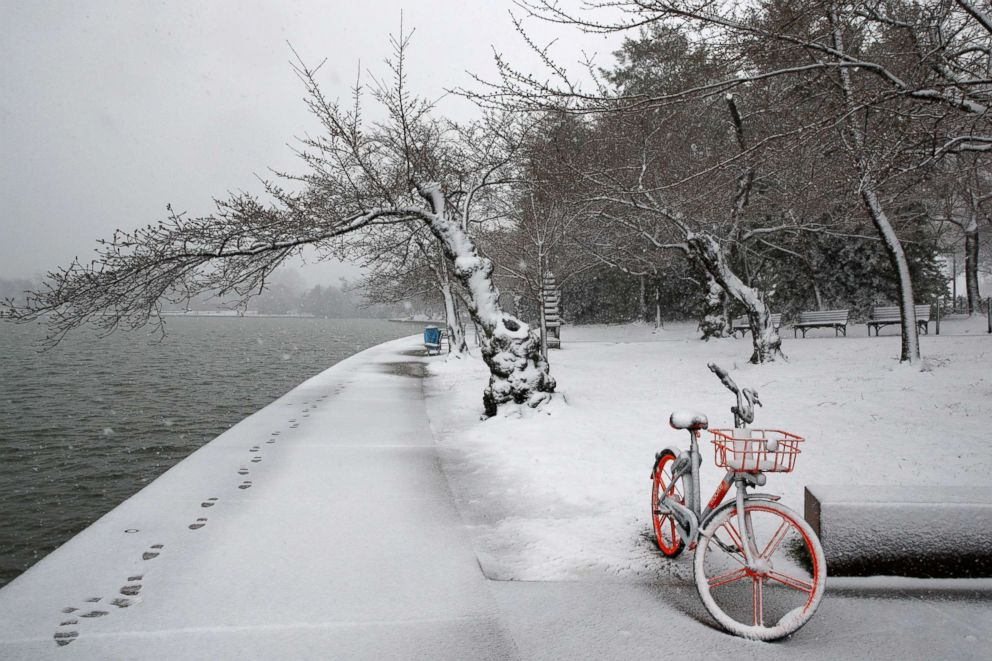 Snow falls on a lone bicycle and cherry blossom trees at the tidal basin, March 21, 2018, in Washington D.C. during a snowstorm on the second day of Spring.
