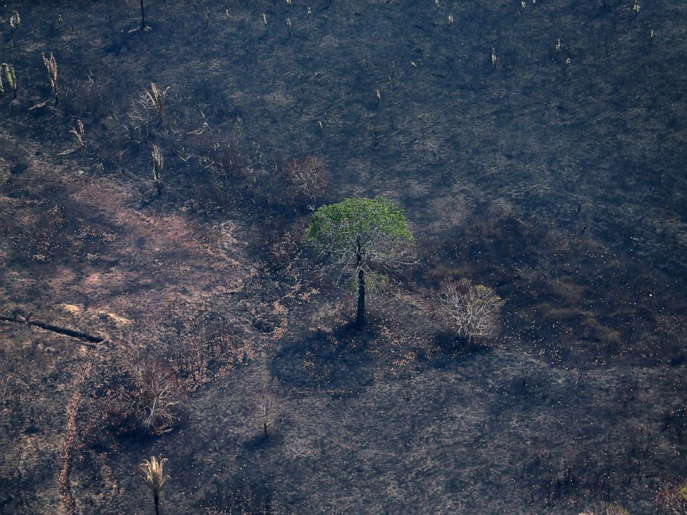 PHOTO: An aerial view of a burned tract of Amazon jungle as it was cleared by loggers and farmers near Porto Velho, Brazil, Aug. 29, 2019.