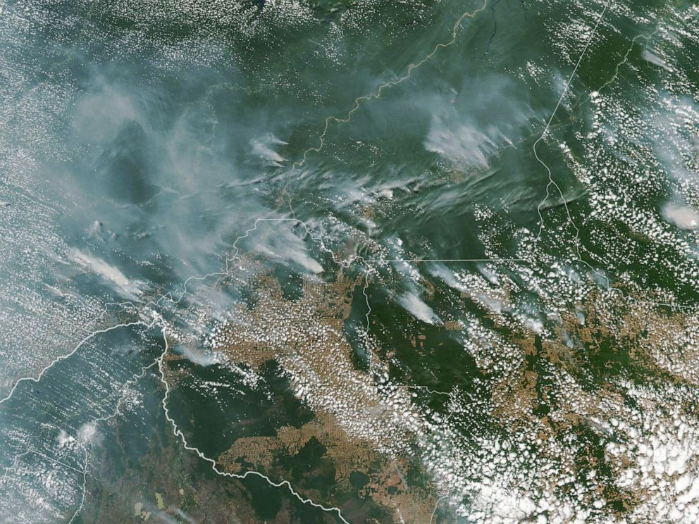 Fires in Amazon rainforest up more than 80% this year