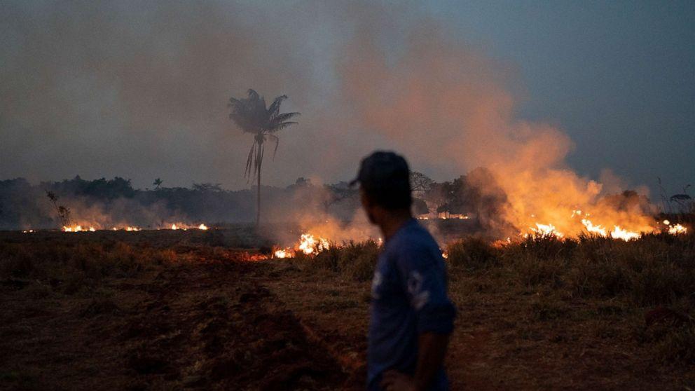 Trump talks Amazon fires with Brazilian president; army sent to fight blazes thumbnail