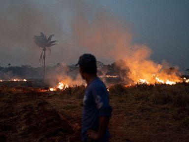 Trump talks Amazon fires with Brazilian president; army sent to fight blazes