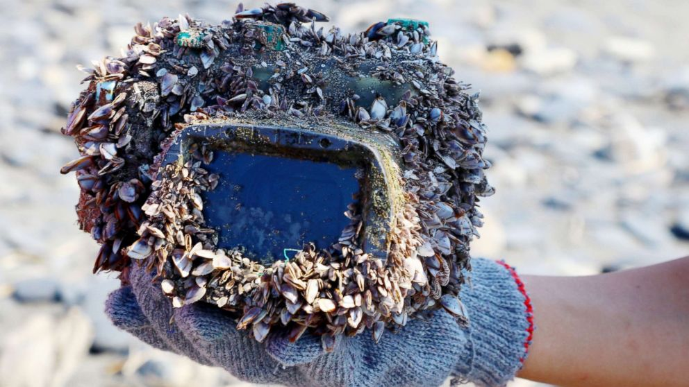 A handout photo made available by teacher Park Lee shows a barnacle-covered camera in a water-proof case that washed up on a beach in Ilan County, northeast Taiwan, March 27, 2018.