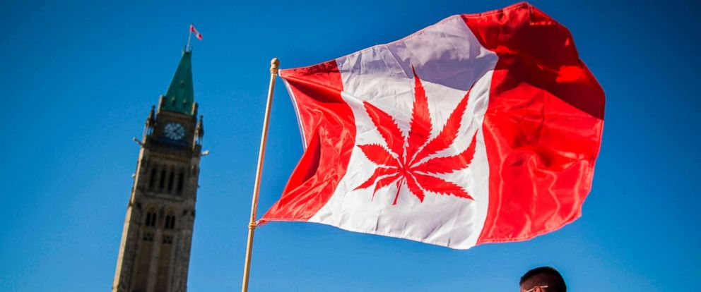 PHOTO: A woman waves a flag with a marijuana leaf on it next to a group gathered to celebrate National Marijuana Day on Parliament Hill in Ottawa, Canada.