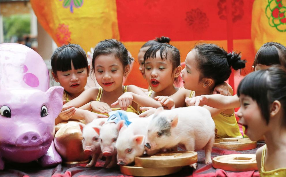 Filipino Chinese girls play with live Teacup pigs, a rare pet in the country, ahead of the Chinese New Year celebrations at Manila's Lucky Chinatown Plaza in Manila, Philippines, Feb. 1, 2019.