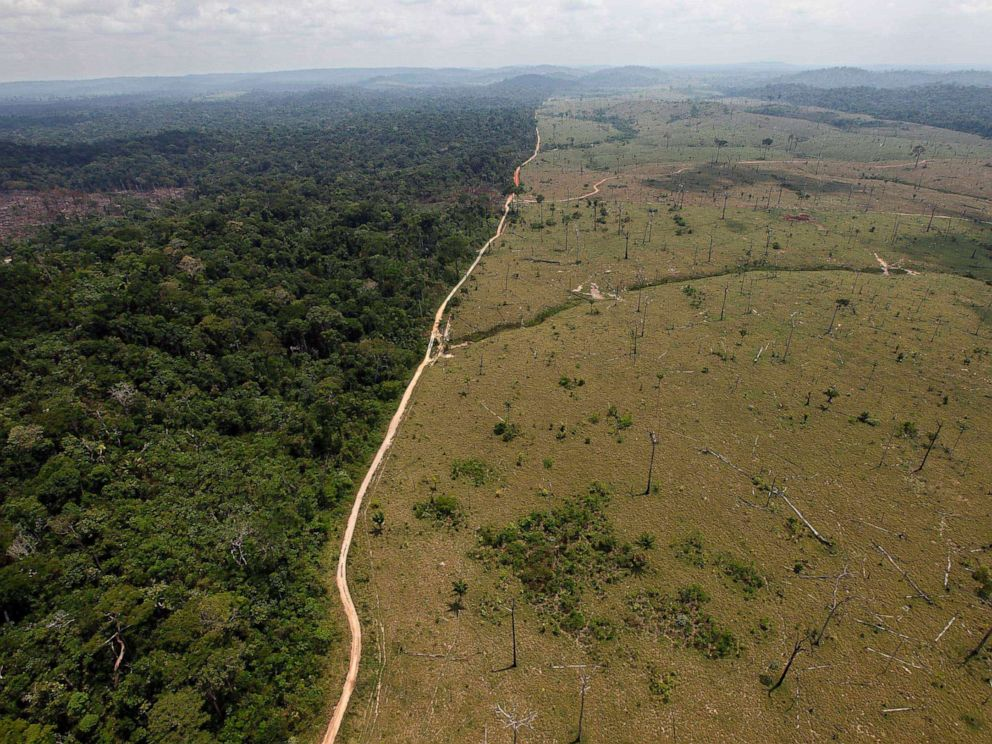 PHOTO: A deforested area near Novo Progresso in Brazils northern state of Para, Sept. 15, 2009.