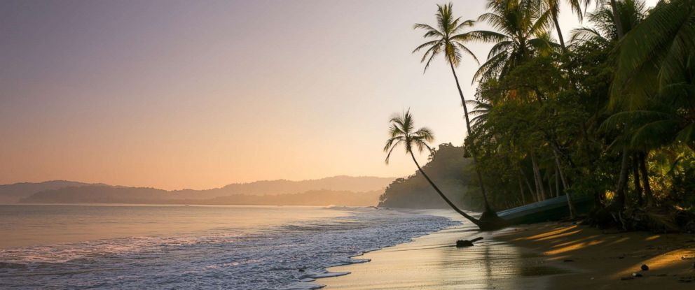 PHOTO: A palm fringed beach in Bahia Drakes, Osa Peninsula, Costa Rica is pictured in this undated stock photo.