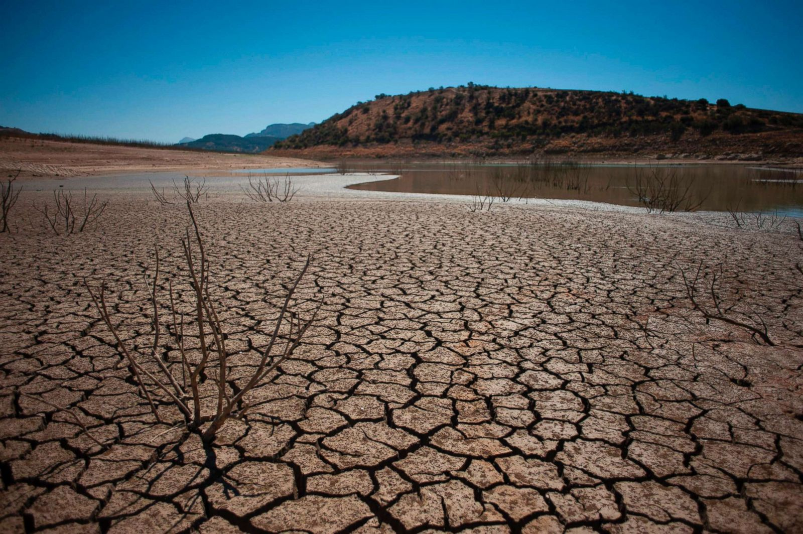 record breaking drought scientists agree - HD1600×1064
