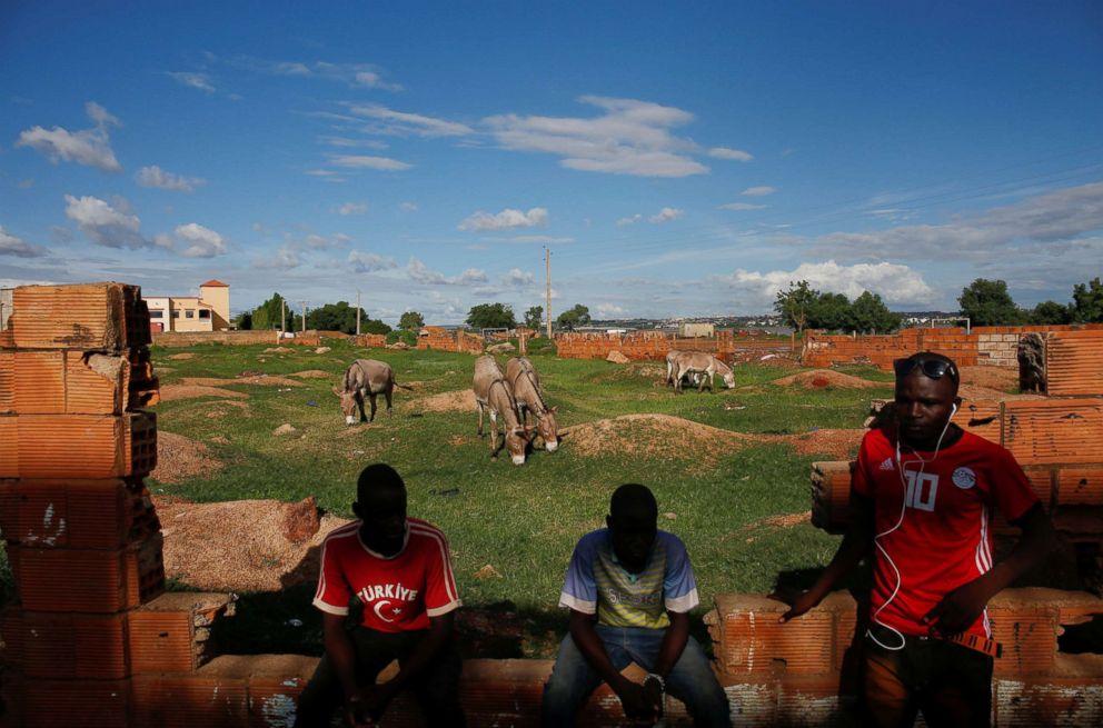 PHOTO: Dramane Diallo, 19, Djibril Diabate and Amadou Keita, 21, sit at the pasture of their donkeys in Bamako, Mali, Aug. 23, 2018.