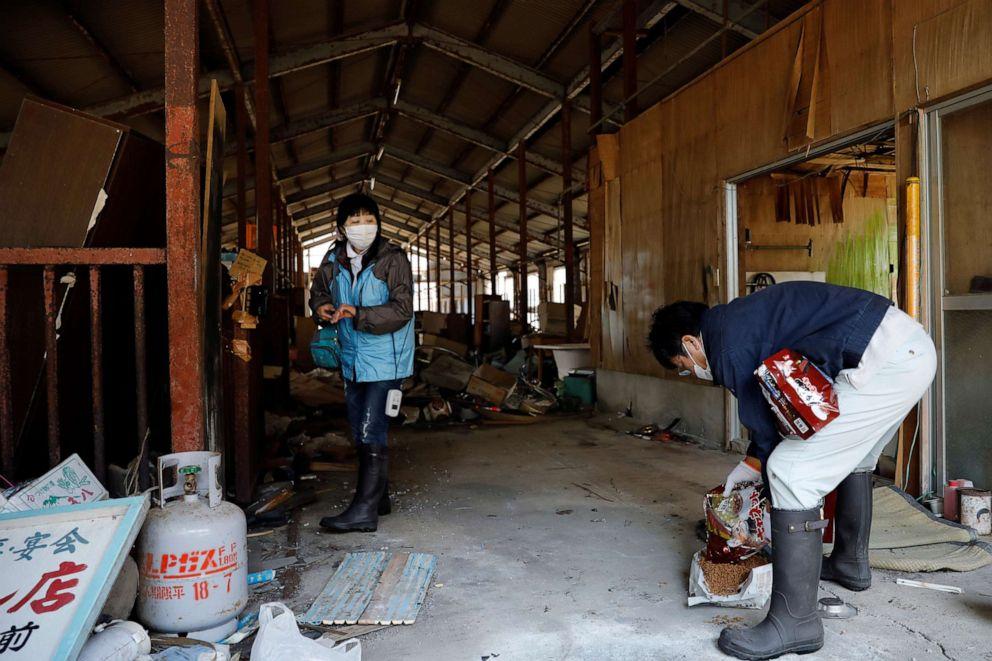 FOTO: Sakae Kato prepara comida para gatos abandonados y salvajes en un granero en una zona restringida en Namie, Prefectura de Fukushima, Japón, 21 de febrero de 2021.