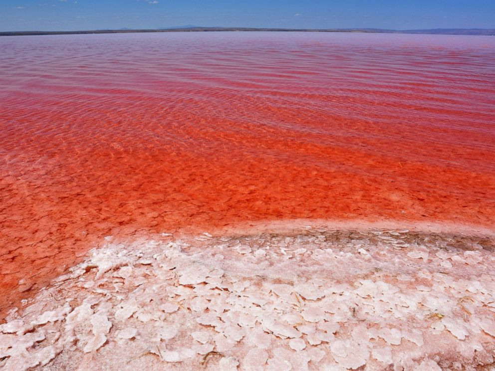 Image result for Red Salt lake Aksaray Turkey