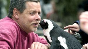 Picky Penguin Gets Her Man Back